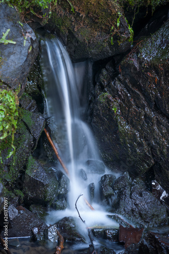 Small Waterfall in the Forest - 261370097