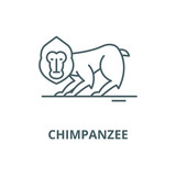 Chimpanzee line icon, vector. Chimpanzee outline sign, concept symbol, illustration