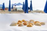 Still life at the Beach - 261386665