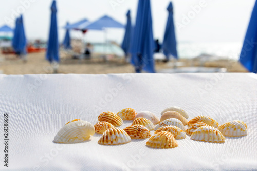 Still life at the Beach © Emilian