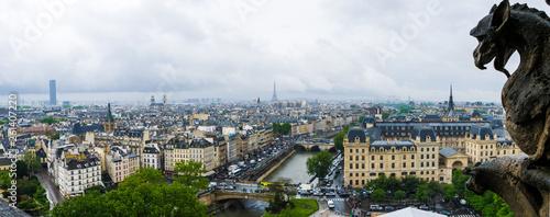 View of Paris from Notre-Dame de Paris Spire - 261407220
