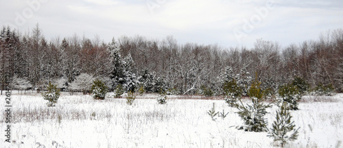 Winter landscape Eastern township Quebec Canada - 261424822