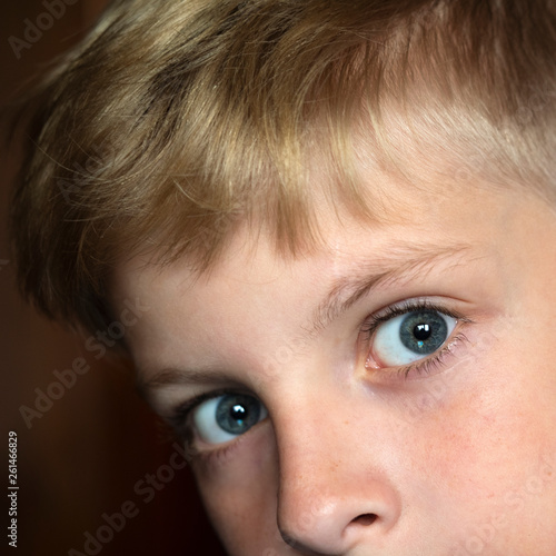 canvas print picture Close-up portrait of  caucasian boy