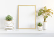 Frame leaning on white shelve in bright interior with plants and decorations mockup 3D rendering - 261501029
