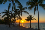 Varadero Beach Sunset with Palm Trees