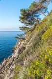 baie de Villefranche sur Mer