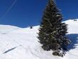 Skifahren in Saalbach Hinterglemm Leogang - 261592426