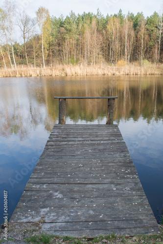 Acrylglas Pier jezioro w lesie