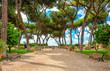 Quadro Orange Garden (Giardino degli Aranci) is the name used in Rome to describe the Savello park (Parco Savello).
