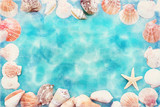 seashells on blue background - 261749627