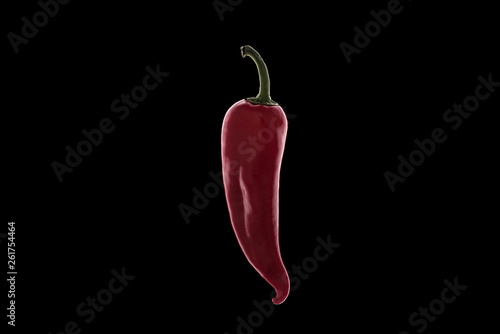red chili pepper on white background - 261754464