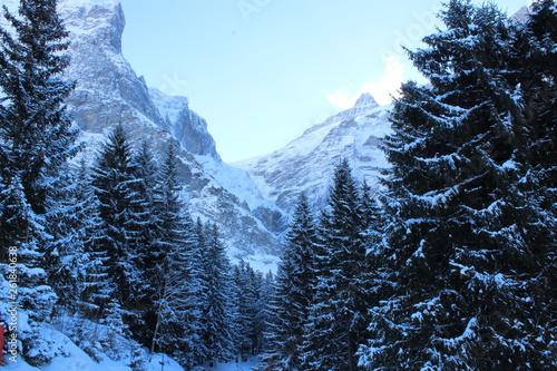 canvas print picture winter, schnee, berg, landschaft, wald, baum, erkältung, natur, himmel, alpen, berg, blau, baum, ski, jahreszeit, weiß, föhre, -tannen, eis, weihnachten, frost, gefroren, hills, szene, schneebedeckt
