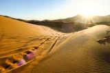 landscape in sahara desert, photo as background