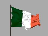 Waving flag of Ireland. Vector illustration.