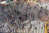Busy Shibuya Pedestrian Crossing From Above