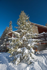 Alpine ski resort with apartments and snowy trees. © Paul Vinten