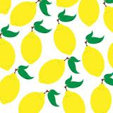 Vector illustration of painted lemon on white background. Symbol of fruit, food,vegetarian,vegan.