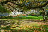 Beautiful scene around Trinity College