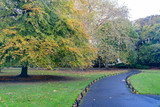 Morning natural scene with bridge, lake, trees at St Stephen's Green