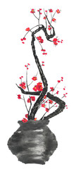 A branch of cherry blossoms in a vase. Pink and red stylized flowers of plum mei and  wild cherry . Watercolor and ink illustration of tree in style sumi-e, go-hua. Oriental traditional painting © marinakutukova