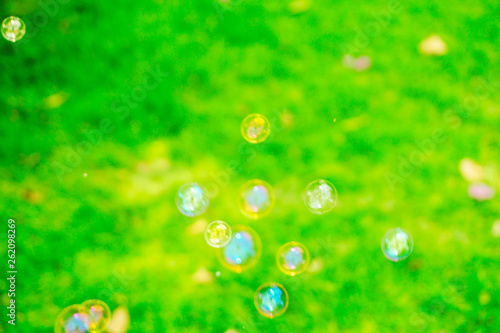 Beautiful colorful black and white soap bubbles texture background and wallpaper - 262098269