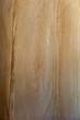 Background: detail of old wooden door