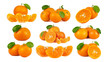 canvas print picture - Mandarin Orange or tangerine citrus fruit isolated on white background.