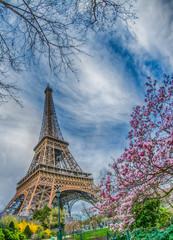 Parigi, Francia, Tour Eiffel, Notre Dame, viaggio,  © Stefania Loriga