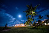 Full moon rising over palm trees - 262219201