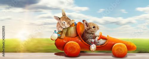 Osterhase unterwegs zum Osterfest! - 262221053