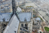 Spire of Notre Dame Cathedral, aerial view from the landmark top - Paris, France - 262229079