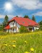 Leinwandbild Motiv ökologisches Bauen - Haus in und mit der Natur