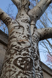love carvings on a tree, Paris, France
