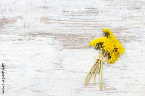 Dandelion lying on wood - 262264477