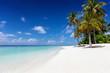 canvas print picture - Exotischer Strand mit Palmen, feinem Sand und türkisem Ozean auf den Malediven