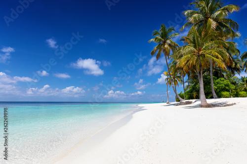 canvas print picture Exotischer Strand mit Palmen, feinem Sand und türkisem Ozean auf den Malediven