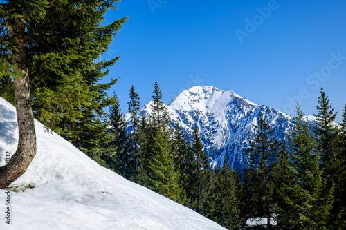 canvas print picture Schneebedeckter Thaneller-Gipfel