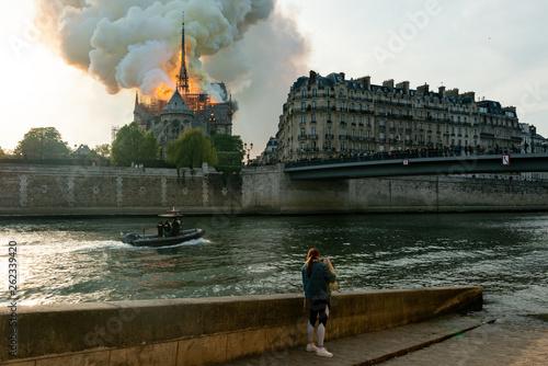 Cathédrale Notre-Dame de Paris - 262339420