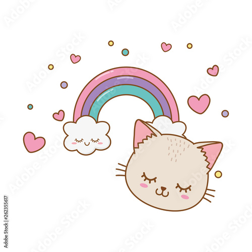 cat with cloud and rainbow
