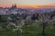 A beautiful spring view of Prague at sunrise from Petrin hill. Prague Castle and St. Vitus Cathedral on the left and a golden rising sun in the background - 262450891