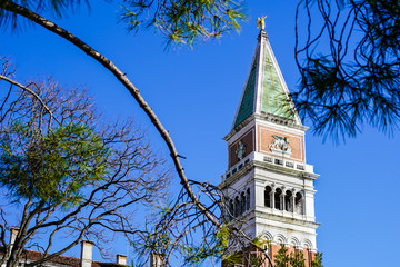 A glimpse of St Mark's Campanile in Venice through a tree