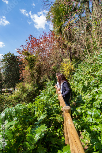 people admiring the garden surrounded by green vegetation.jpg