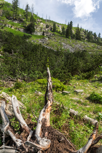 Landscape from hiking trail for Malyovitsa peak, Rila Mountain, Bulgaria - 262489217