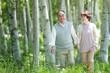 森林�中を歩�シニア夫婦