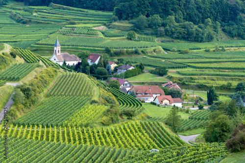 landscape scenery in Breisgau Germany