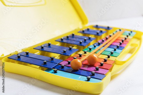 rainbow dubble xylophone close up on a white backgpound - 262579036
