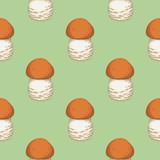 Boletus. Edible Mushroom Seamless Pattern