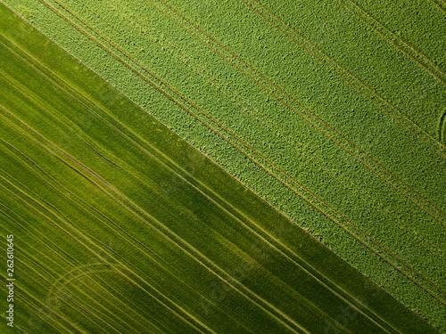 canvas print picture Landwirtschaft - Feld von oben