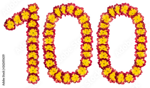 Leinwanddruck Bild Numeral 100, one hundred, from natural flowers of primula, isolated on white background