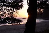 North America, Oregon, Sunset Bay State Park. Beach at sunset.